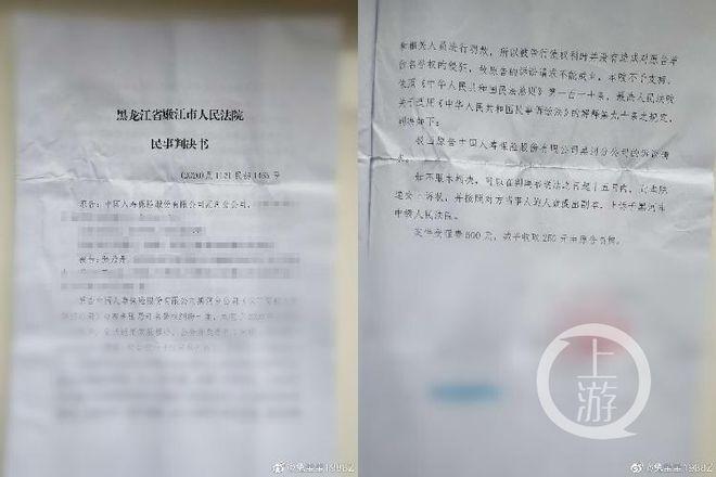 ▲2020年,张乃丹被中国人寿黑河分公司起诉侵犯名誉权。图片来源/张乃丹微博